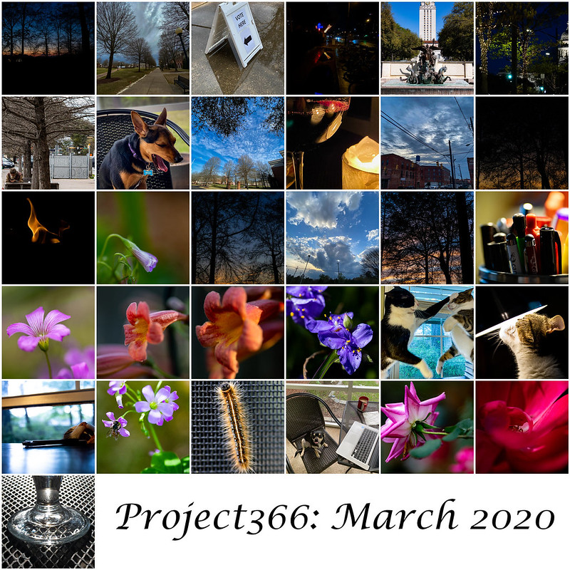 Project 366 March