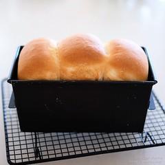 レーズン酵母のフランス食パン 20200401-DSCT5975 (2)