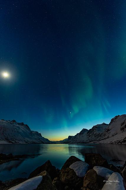 Brillefint i Ersfjorden