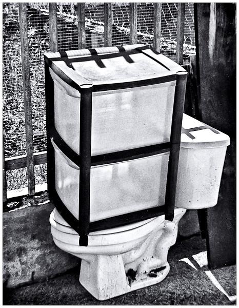 Probando Polaroid Swinger  (1966)