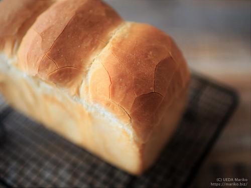 レーズン酵母のフランス食パン 20200401-IMG_8951 (2)