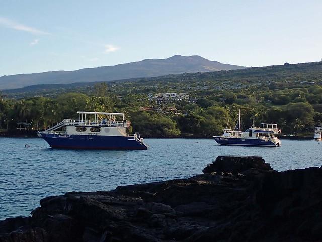 tour boats stilled in Keauhou Bay