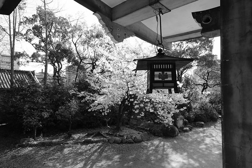 02-04-2020 Osaka vol01 (26)