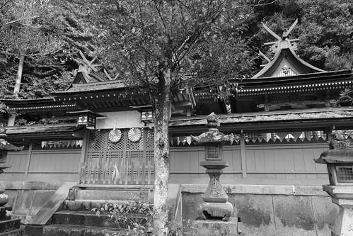02-04-2020 Nara pref. Utanomikumari-jinjya Shrine (8)