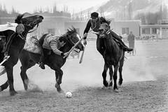 帕米尔高原的马背运动—马球