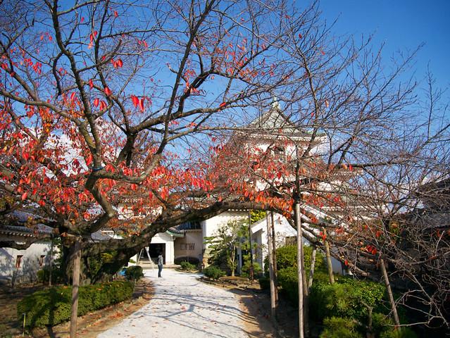785-Japan-Wakayama
