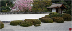 Shoden-in rock garden, Kyoto, Japan