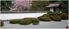 Shoden-in rock garden, Kyoto, Japan