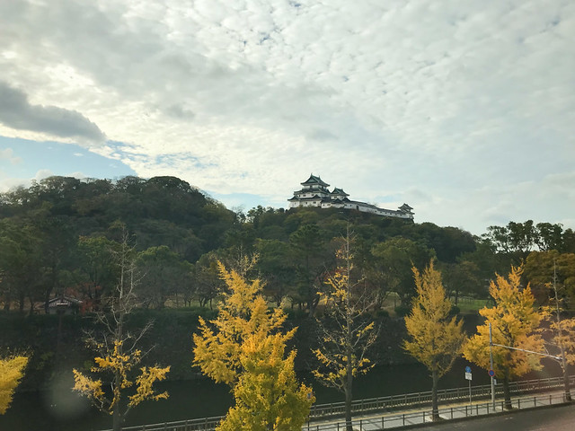 814-Japan-Wakayama