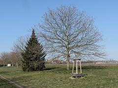 Tempelhofer-Feld 1024010167