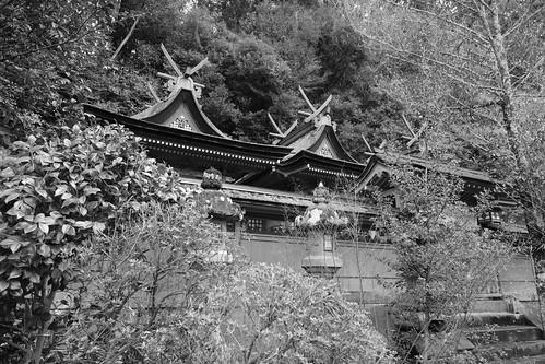 02-04-2020 Nara pref. Utanomikumari-jinjya Shrine (12)