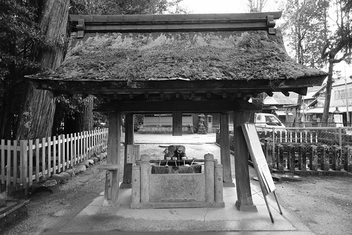 02-04-2020 Nara pref. Utanomikumari-jinjya Shrine (4)