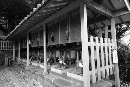 02-04-2020 Nara pref. Sumisaka-jinjya Shrine (9)