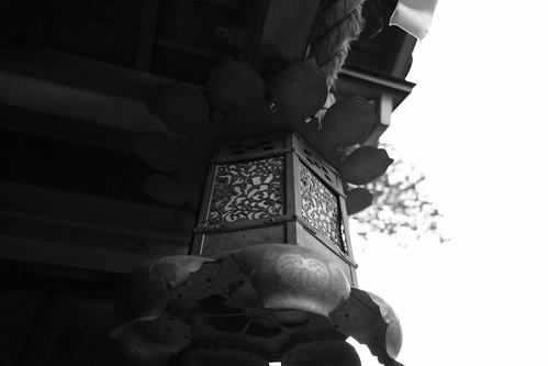02-04-2020 Nara pref. Sumisaka-jinjya Shrine (8)