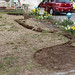 I am working on removing the turf for my new expanded garden. I laid it out with a garden hose first then dug out the out line and now as of this photo removing the turf.