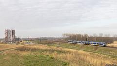 NS 2340+2335 - Almere Oostvaarders - 02/04/2020