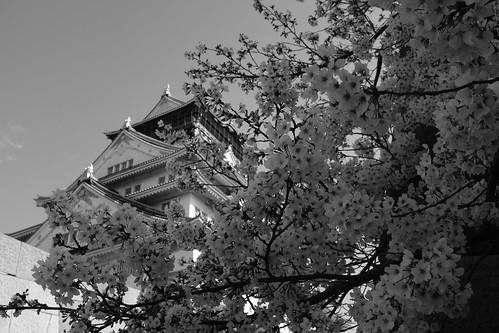 02-04-2020 Osaka vol02 (3)