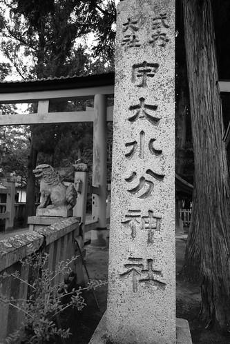 02-04-2020 Nara pref. Utanomikumari-jinjya Shrine (3)