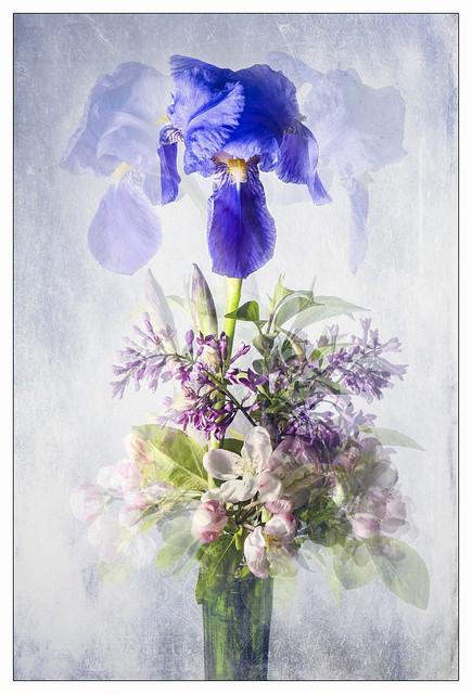Bouquet confinement
