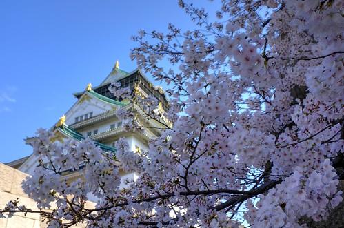 02-04-2020 Osaka, Osaka Castle vol01 (3)