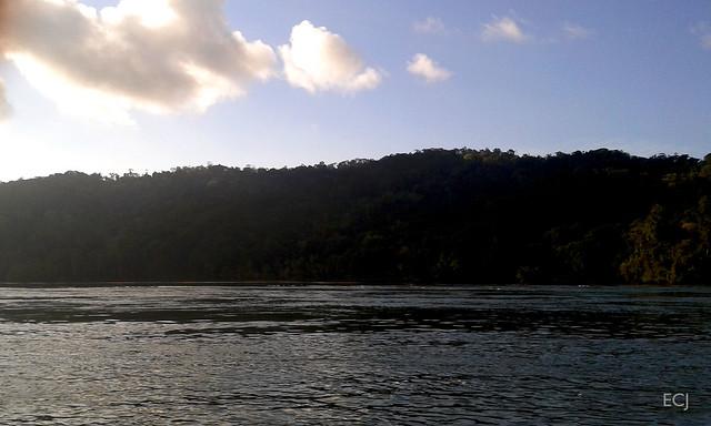 Las colinas cerca de la boca del río Sierpe/ The hills near the Sierpe river mouth