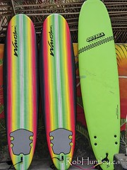 Surfboards for rent.