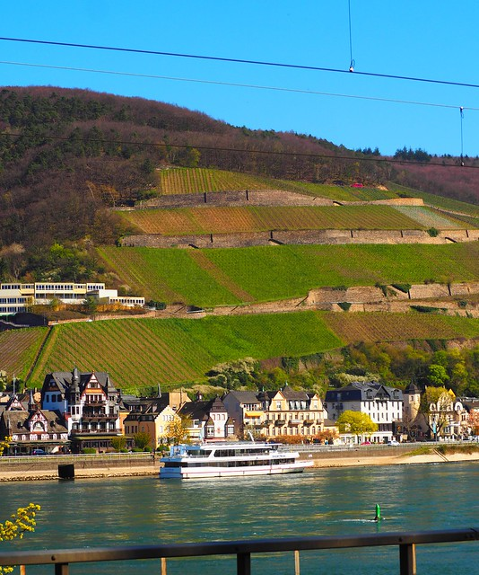 Aßmannshausen on the Rhine in Germany - On the left the Hotel Krone (crown), which is nearly 500 years old. Many famous people had been there last 500 years.