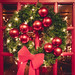 Christmas Wreath I