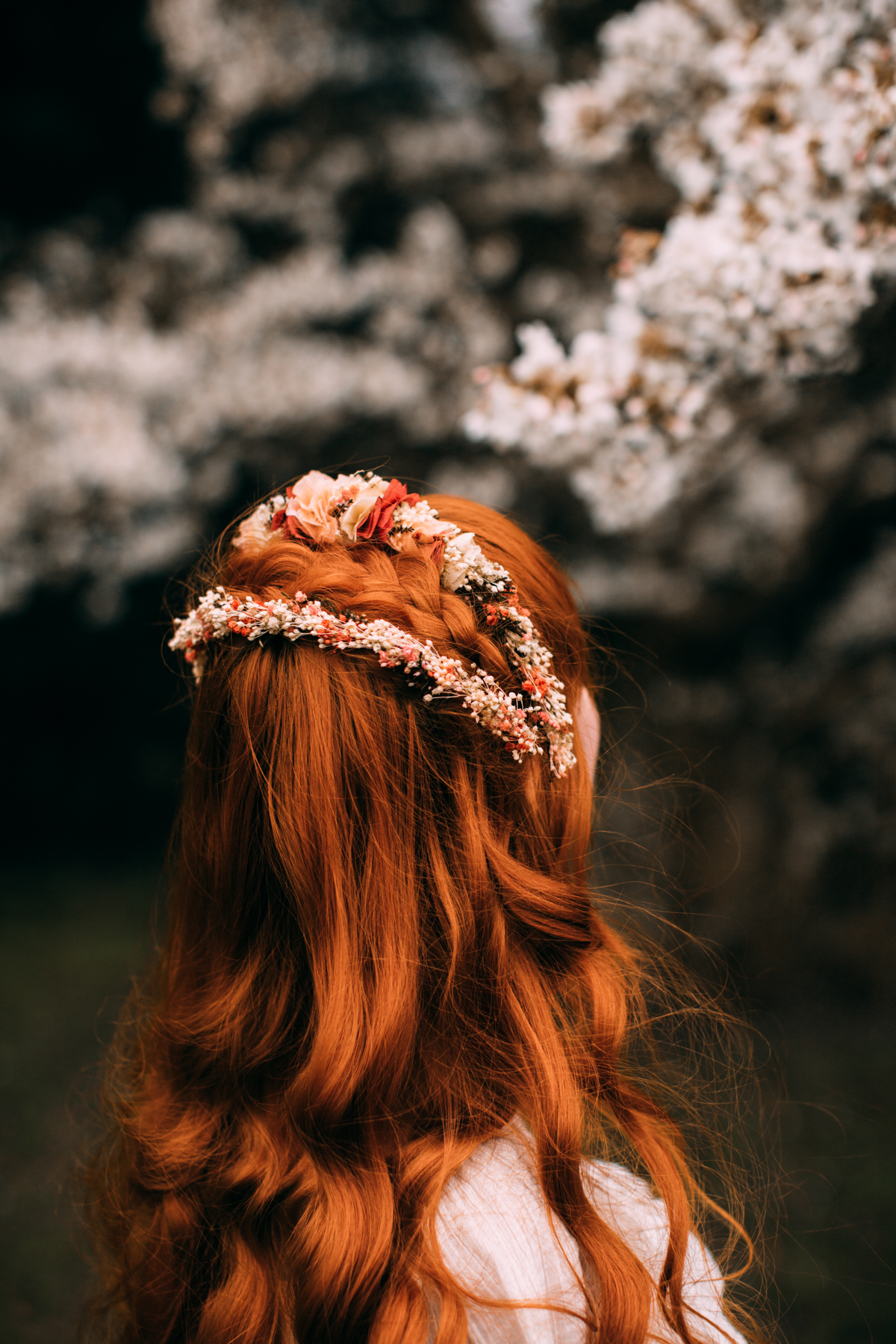 bloss-28