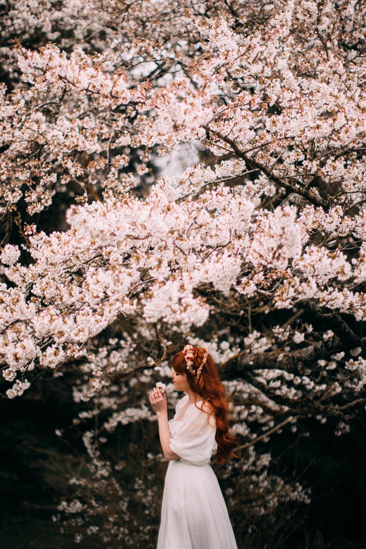 bloss-8