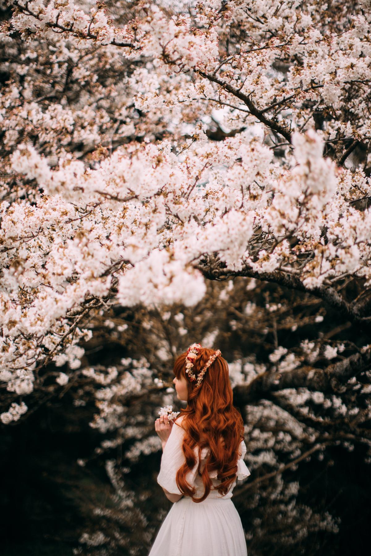bloss-4