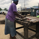 Processor at the retail point of catfish and tilapia carrying out processing_Brianna Bradley_WorldFish