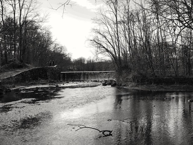 Took a walk. Small park near my home. Nobody near me. Mental health break.