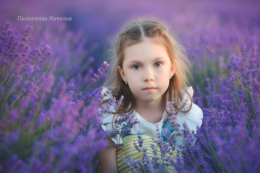 фотограф севастополь, фотограф в севастополе, фотосессия, семейный, детский, свадебный, фотосессия в лаванде крым.