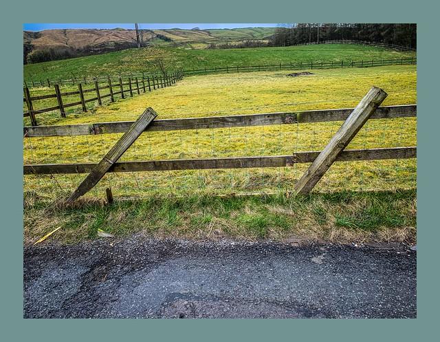 Broken fence Friday