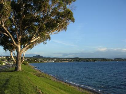 Taupo Shore