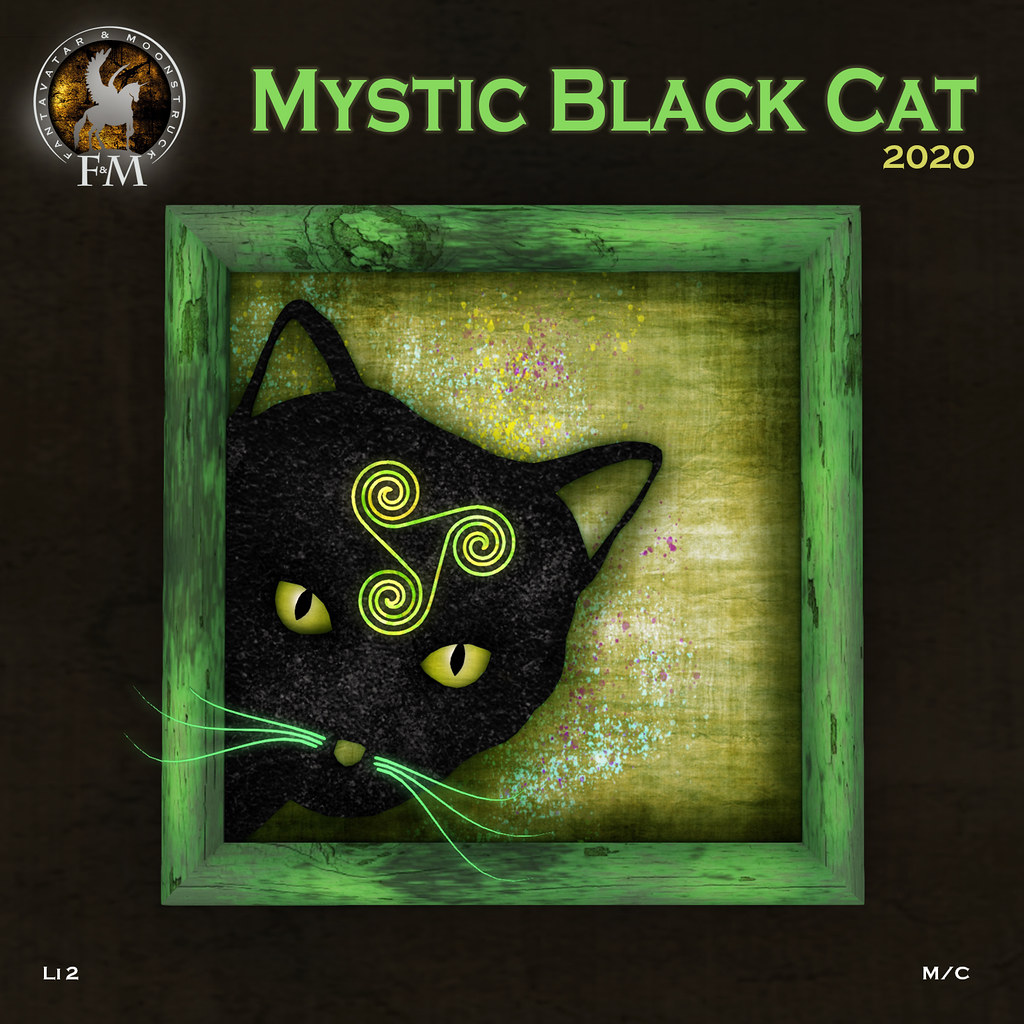 F&M Mystic Black Cat 2020