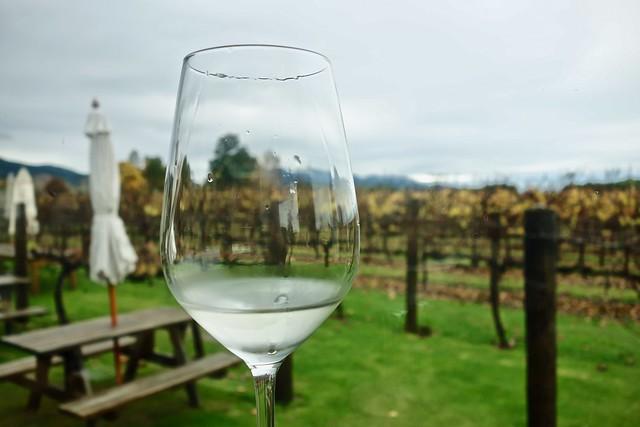 Il vino di Marlborough: Sauvignon Blanc