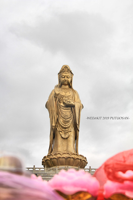Putuosan2019