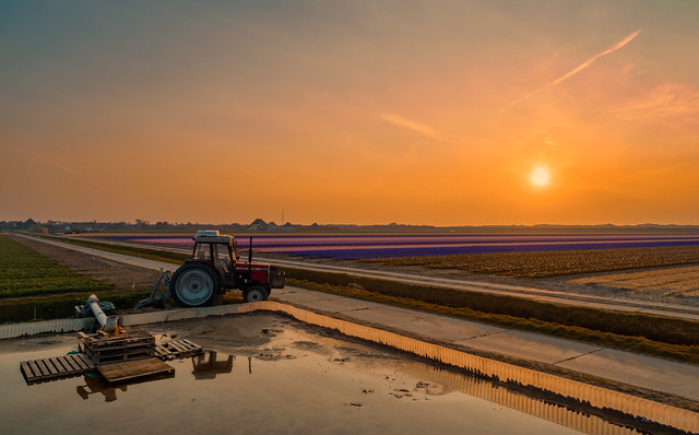 A tractor pausing to watch the sun set.