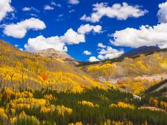 Million-Dollar Colorado Color