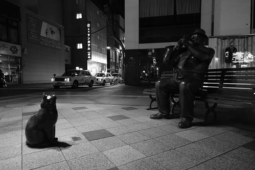 03-04-2020 Asahikawa in night (8)