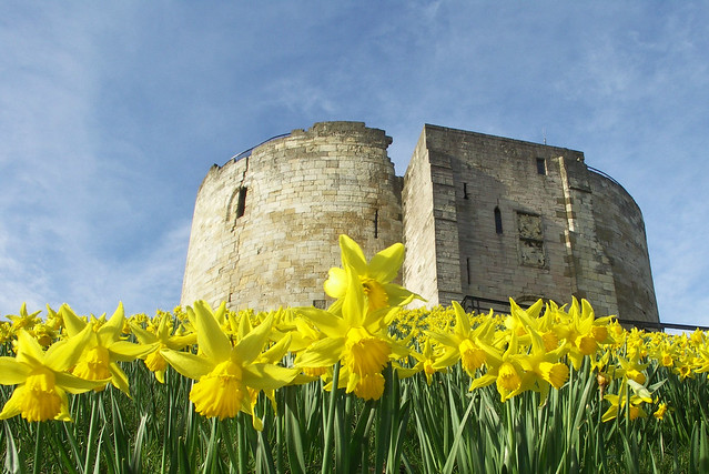 Springtime in York