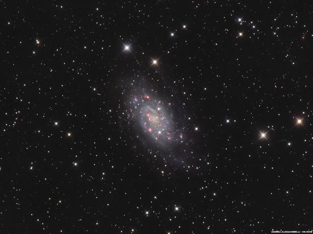 NGC 2403 - Caldwell 7