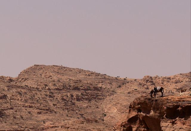 Petra, Jordan, June 2019 017