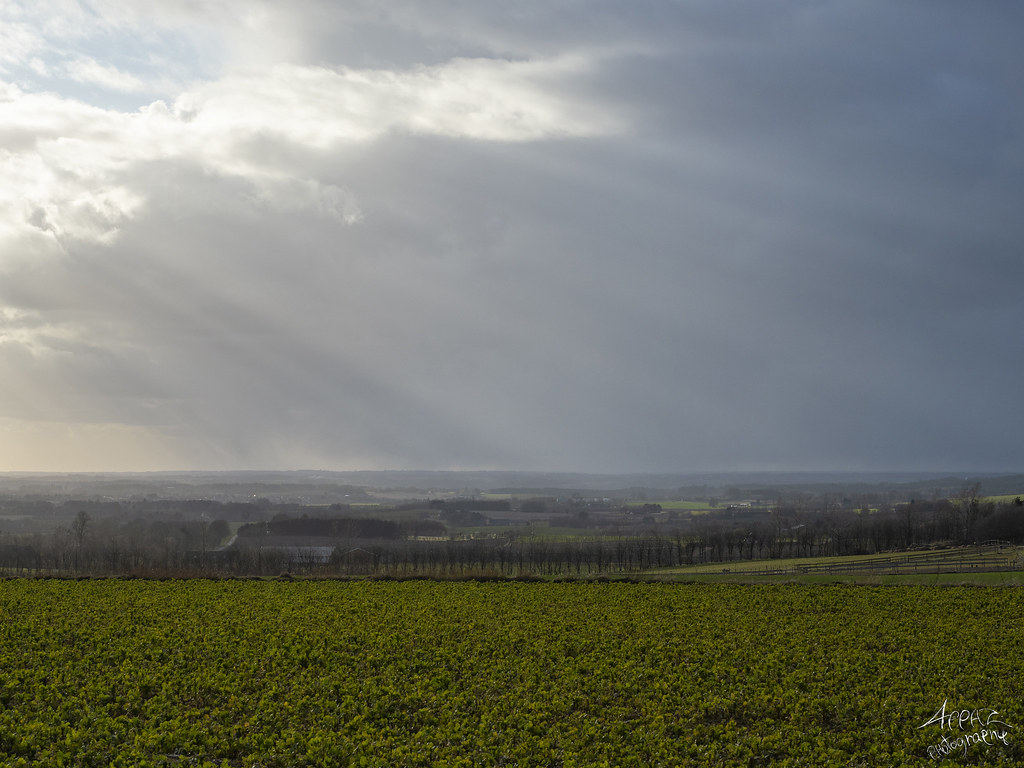 Sorring Sunset, Silkeborg 2020