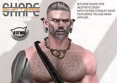 [SHAPEshifters] BITCHER SHAPE FOR AESTHETIC BODY WITH STANLEY HEAD