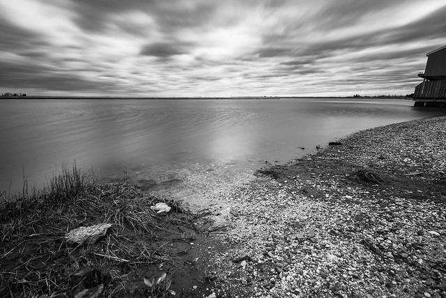 Littered Shoreline