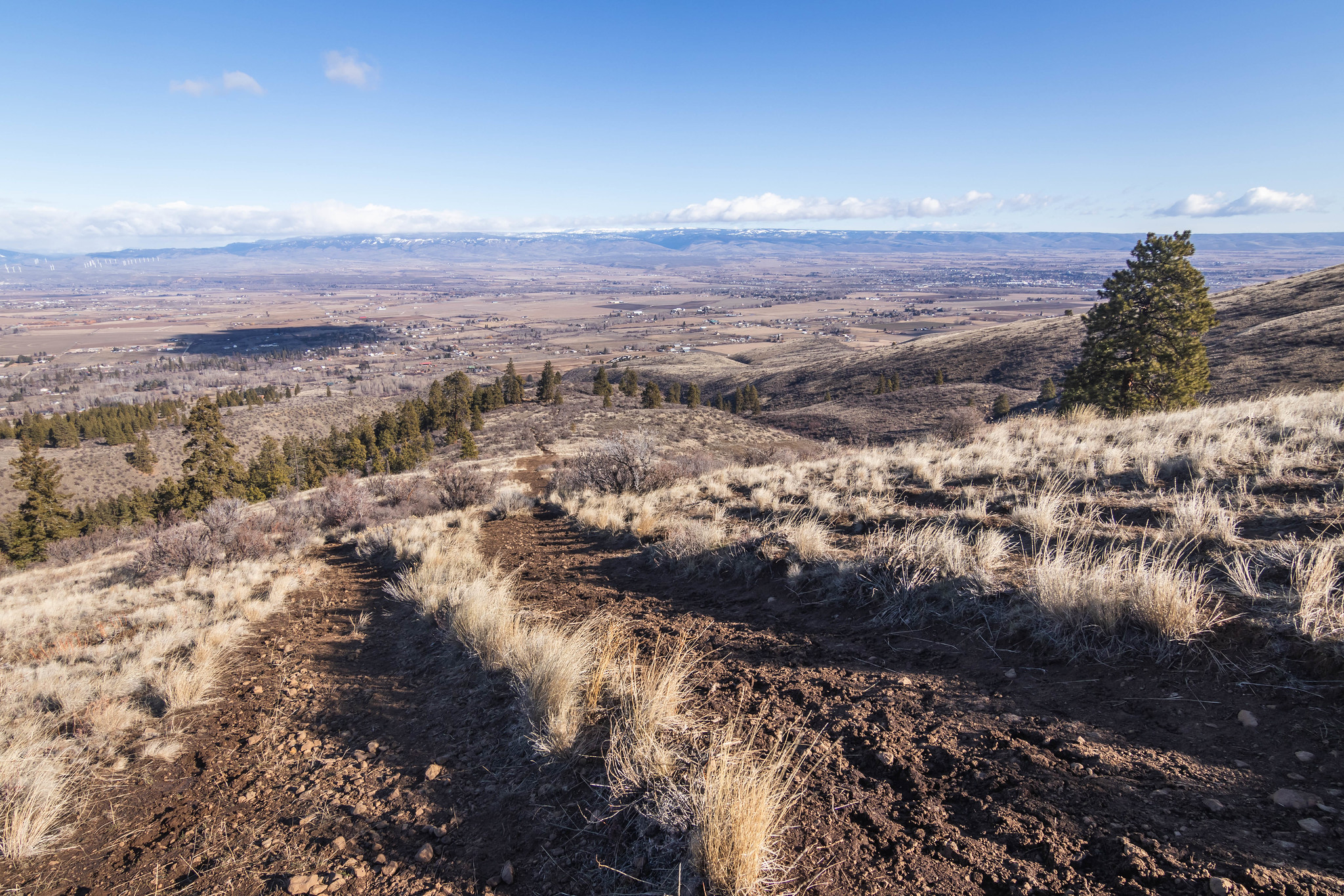 Kittitas Valley from Westberg Trail