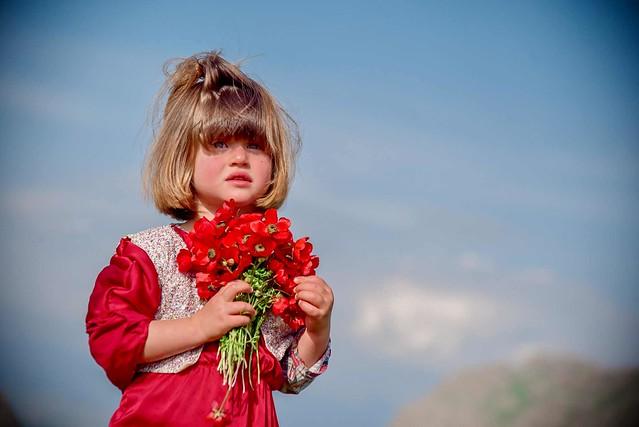 Kurdistan  Pelên daran weşiyan.